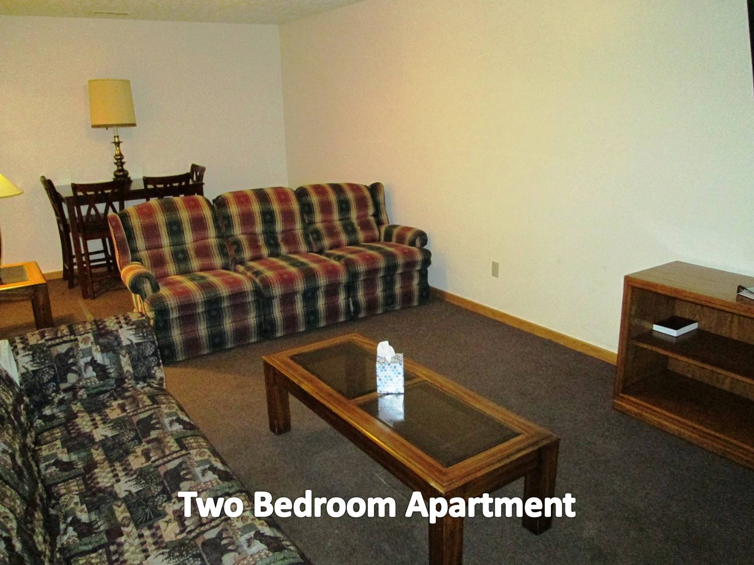 2 bedroom apartment two queen beds, kitchen. lving room with pullout sofa. .
